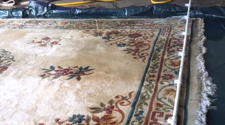 Oriental Rugs Cleaning & Protecting